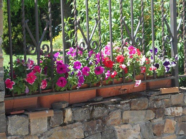 Flores-de-Villagatn.jpg