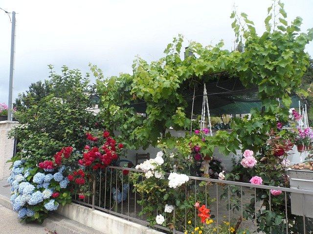 Jardin-en-Calle-del-Palacio.jpg